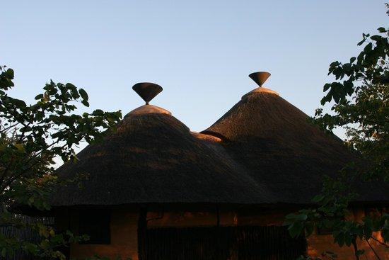 Mopane Bush Lodge: daken van de chalets