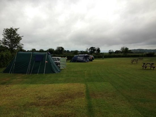 Barcdy Caravan & Camping Park: Across the Main field (electric hook-up, grass pitches)