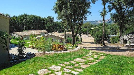 Résidence Sophia : L'environnement de sophia résidence