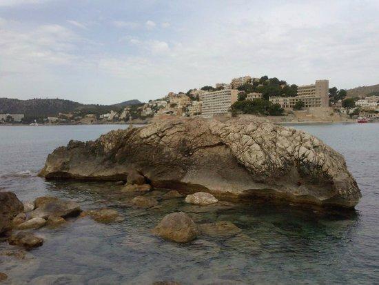 HSM S'Olivera: Extreme stone formation