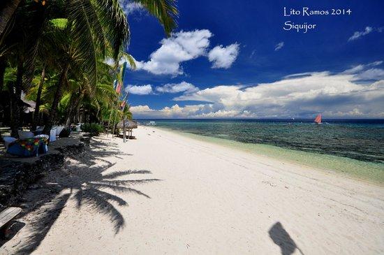 Coco Grove Beach Resort : Beach side
