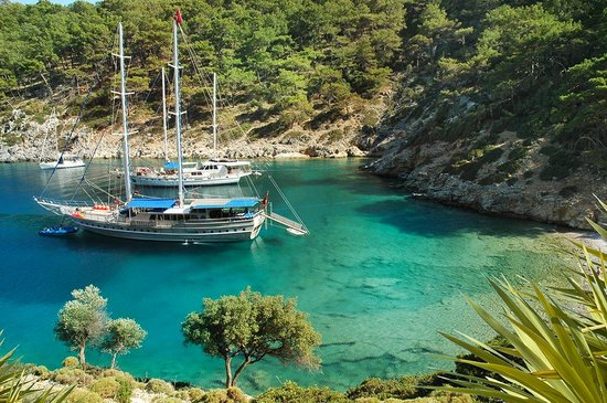 Турция: Close your eyes and think of the idyllic Turkish coast where pine trees touch the warm Aegean Se