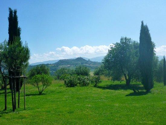 Tenuta di Canonica : Stunning views