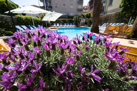 Hotel Torino Wellness & Spa: Swimming pool and terrace