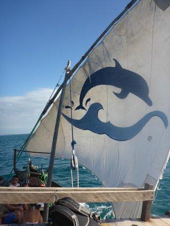 Zanzibar Watersports: Sail up for the ride home