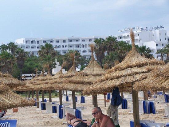 Yadis Hammamet: spiaggia