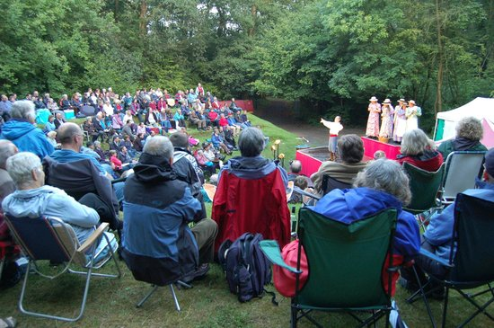 The Hawth: Summer performance in woodland amphitheatre