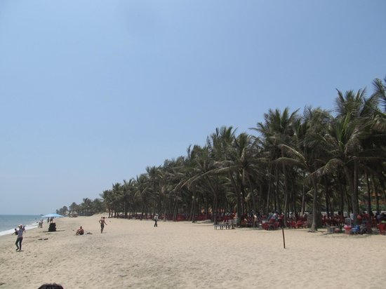 Cua Dai Beach: Golden sands to the south