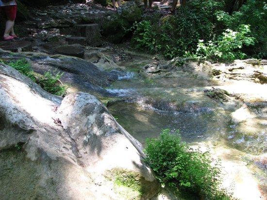 Jeep Safari / Private Daily Tours: Wodospad