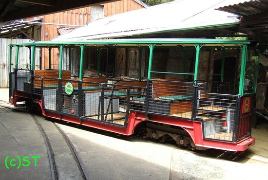 Driving Creek Railway and Potteries: the train