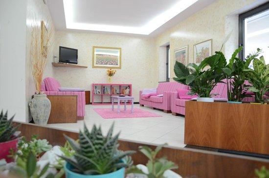 Hotel Gioia: zona tv