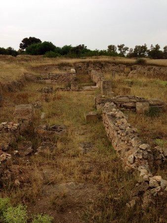 Pupput Roman Site: Pupput site