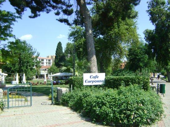 Cafe Carpouza: The entrance to the garden