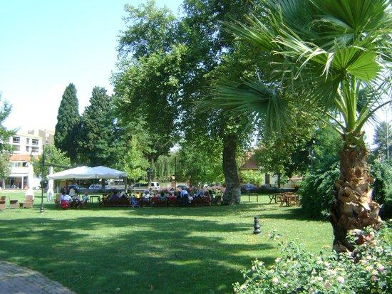 Cafe Carpouza : The garden of the cafe