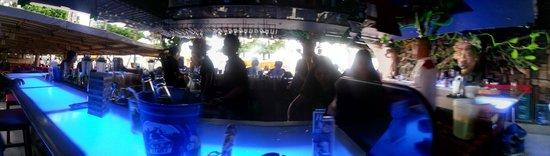 Red Coconut Beach Hotel: Bar