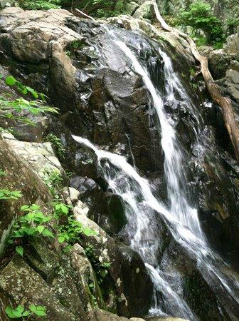 Skyland: Rose River Falls