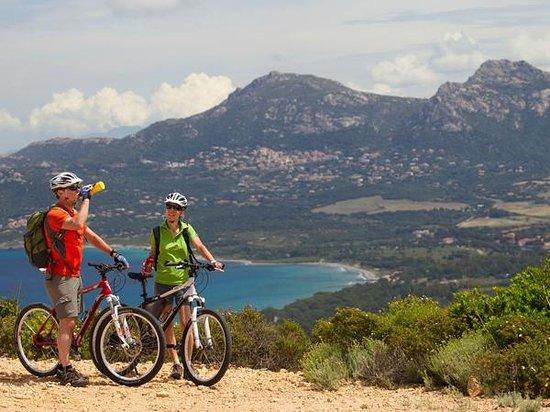 Feriendorf Zum Stoerrischen Esel: Radtour