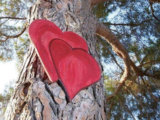 Feriendorf Zum Stoerrischen Esel: Der Baum der Herzen