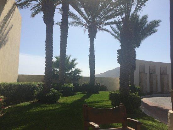 Pueblo Bonito Pacifica Golf & Spa Resort: Resort garden