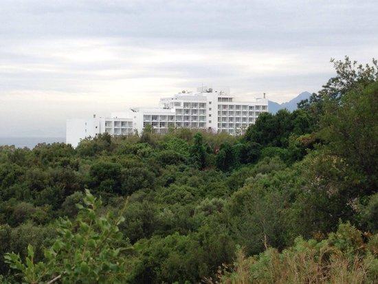Hotel Su: Вид (отель) из соседнего парка