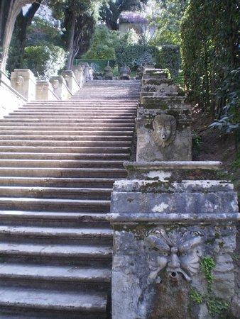 Villa d'Este: Лестница...