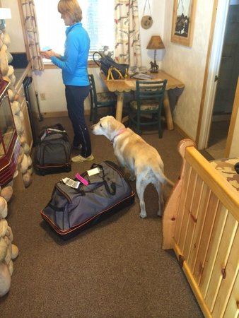Fireside Lodge Bed and Breakfast: Kona helping us get settled