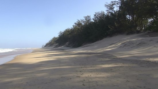 Parc de la zone humide d'iSimangaliso : iSimangaliso - Cape Vidal (03)
