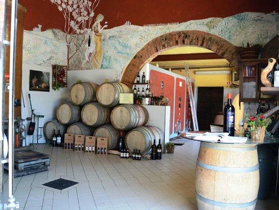 Montespertoli, Italy: la cantina