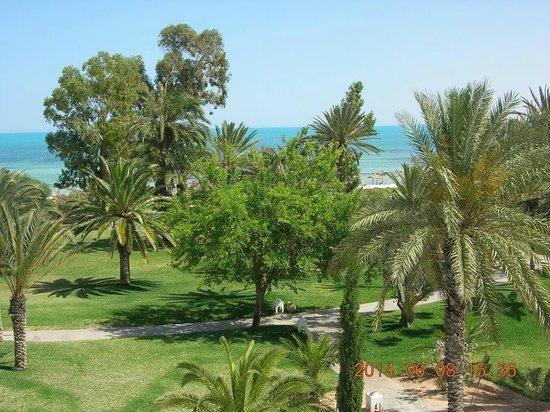 Club Med Djerba la Douce: vue chambre 438 CALYPSO