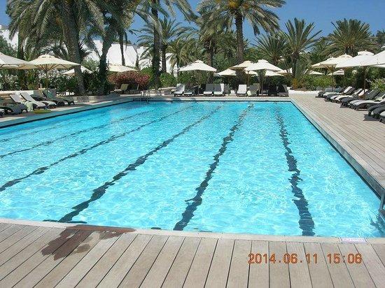 Club Med Djerba la Douce: piscine sportive coté CALYPSO