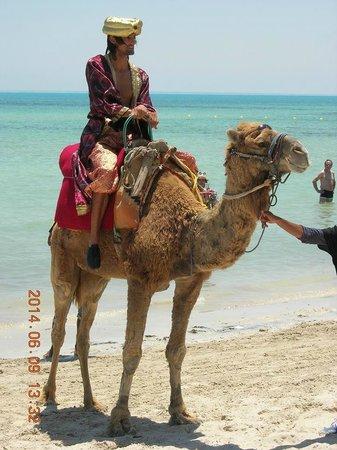 Club Med Djerba la Douce : Palito anime  la journée Tunisienne !