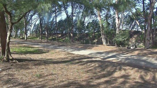 Parque del Humedal de iSimangaliso: iSimangaliso - Cape Vidal (05)