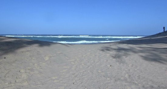 Parque del Humedal de iSimangaliso: iSimangaliso - Cape Vidal (06)
