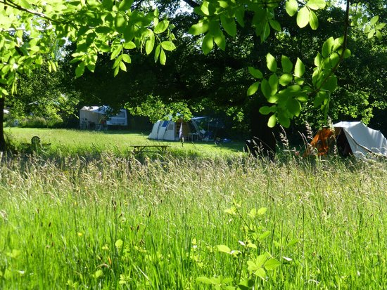 """Epiry, Francia: """"Vanaf de Yonne: zicht op camping"""