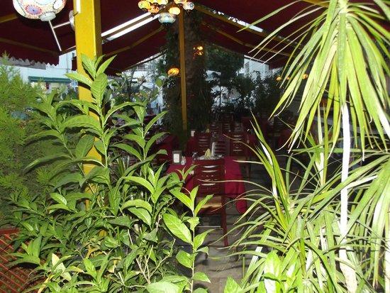 Otantik Ocakbasi: otantik ocakbaşı garden