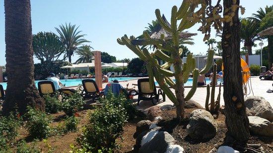 Bungalows Club Maspalomas: nice and small pool area