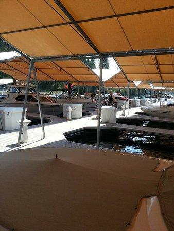 Coeur d'Alene Lake: Marina in Harrison