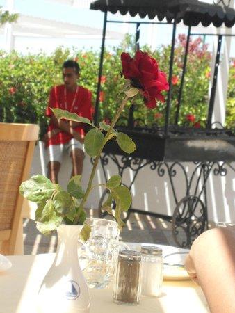 El Mouradi Port El Kantaoui : petit bbq au repas de midi