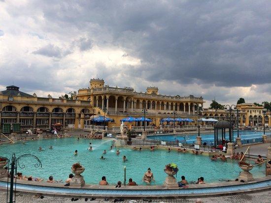 Széchenyi Baths and Pool : Main outdoor baths