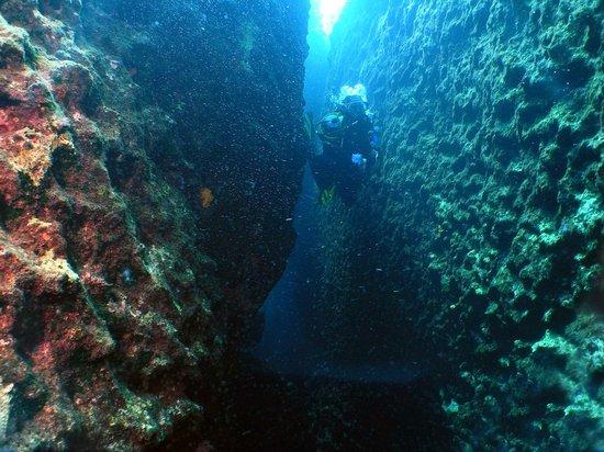 Dive2gether Crete: Duiken