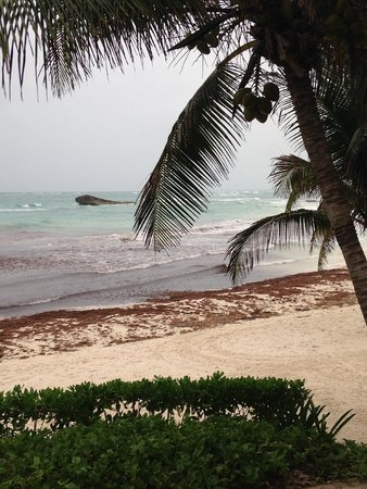 Maya Tulum Retreat & Resort: View from the beach