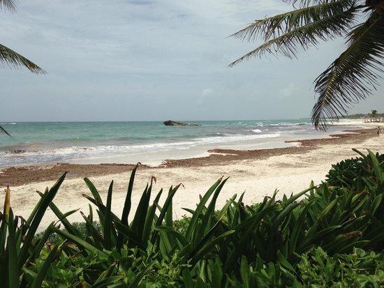 Maya Tulum Resort: View of beach