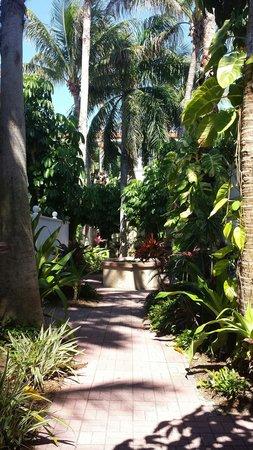 Tortuga Beach Resort: Garden area leading to courtyard room