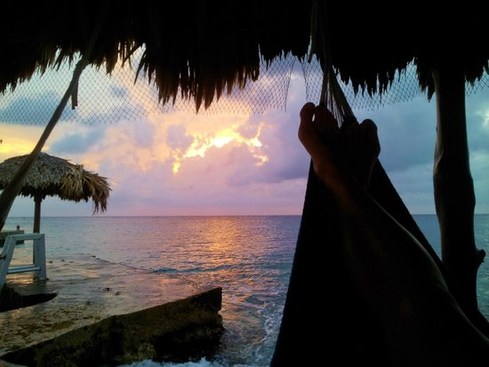 Scuba Club Cozumel: Hammocks by the water