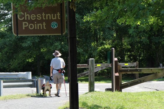 Manasquan Reservoir Visitor Center: Chestnut Point- parking, south side of water