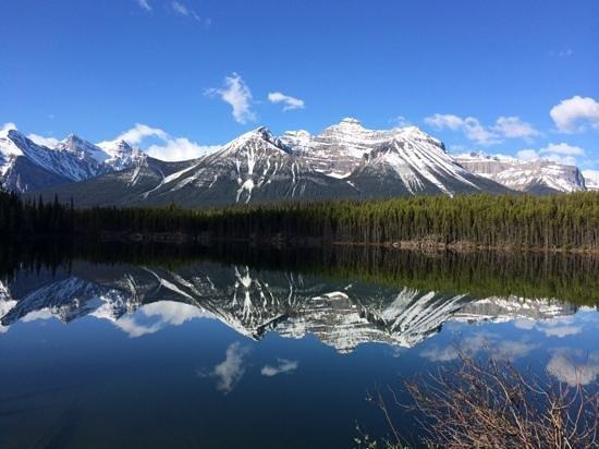 Herbert Lake: Lake Herbert
