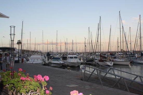 Puerto calero marina picture of hesperia lanzarote puerto calero tripadvisor - Hesperia lanzarote puerto calero ...