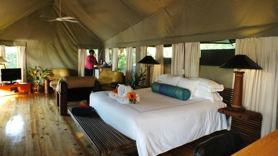 Sau Bay Fiji Retreat Interior of Luxury African Safari tent : african safari tents - memphite.com