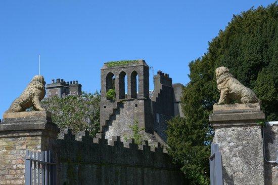 Malahide Castle: Malahide Abbey ruins