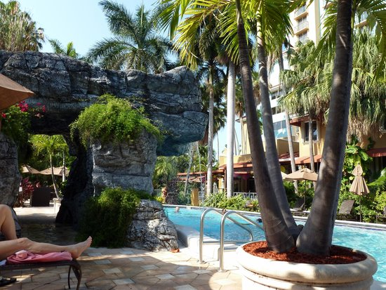 Embassy Suites by Hilton Fort Lauderdale 17th Street: Pool